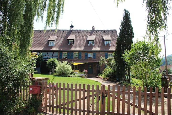 La Ferme du Heubuhl gîte à Obersteinbach - Obersteinbach - Apartamento