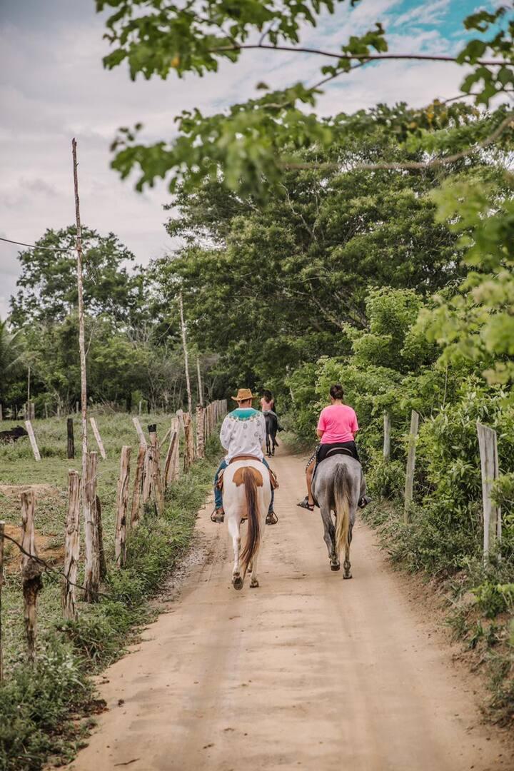 Saindo para a cavalgada