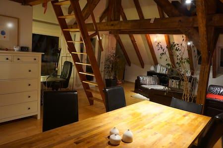 Cosy loft apartment - Zürich