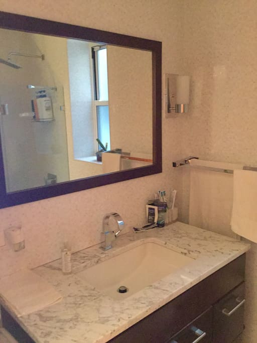 Main or first floor bathroom fully renovated