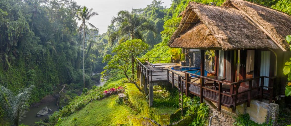 """Ross, Airbnb On-Line Guest Review:  """"Be prepared to be amazed. This is exactly where my fantasies about Ubud became reality..."""""""