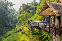 "Ross, Airbnb On-Line Guest Review:  ""Be prepared to be amazed. This is exactly where my fantasies about Ubud became reality..."""