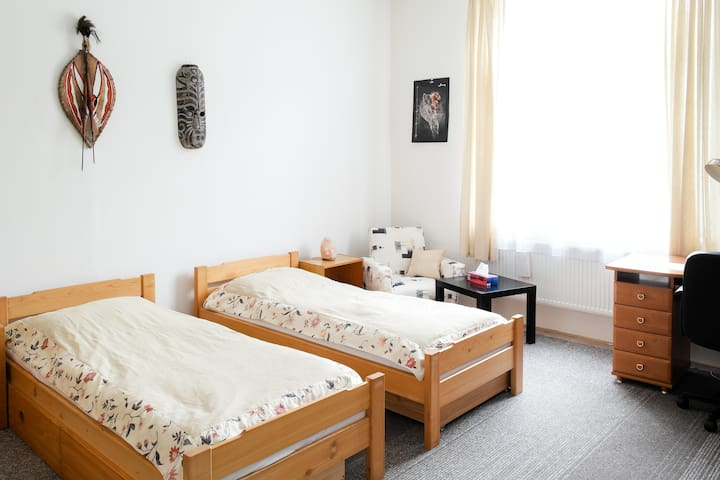 Big room near the city center - Brno - Pis