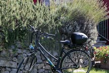 Bike elettrica