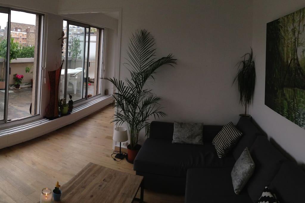 Appartement lumineux avec une spacieuse terrasse for Appartement paris avec terrasse