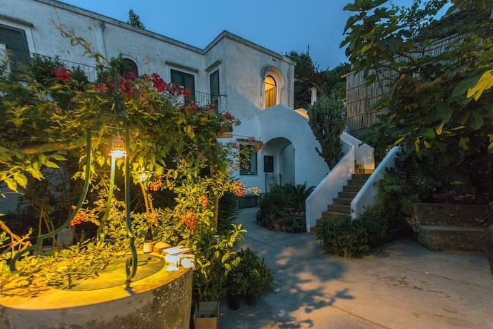 Villa Rosella- Winery Scala Fenicia - Capri - Villa