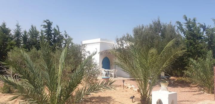 villa Olivier style Djerbien proche des plages