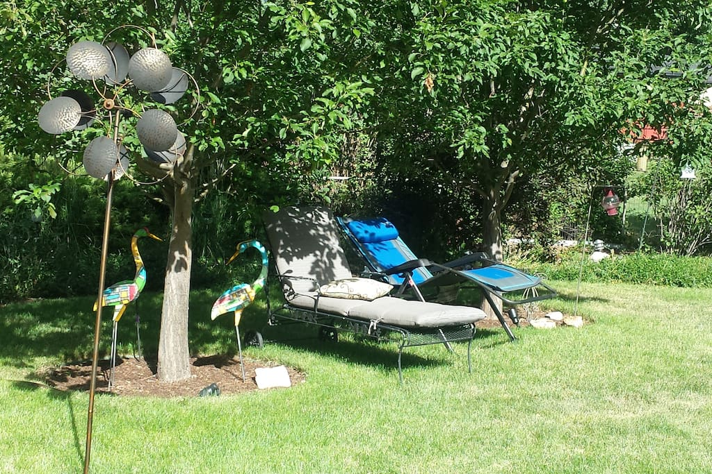 Backyard loungers under trees
