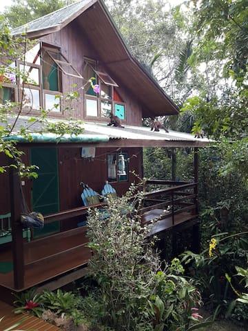 Chalé e os macacos pregos no telhado