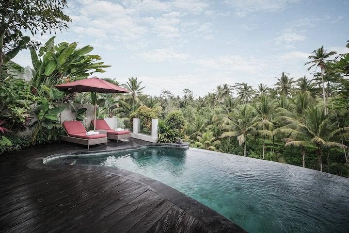 Infinity Pool Villa - Stunning Rice Terrace Vew