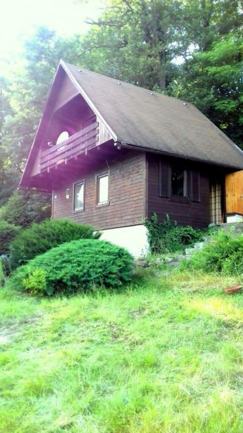 House on the banks of the river Sázava, Prosecnice
