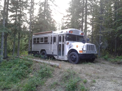Gypsy Bus at Mount Logan Lodge