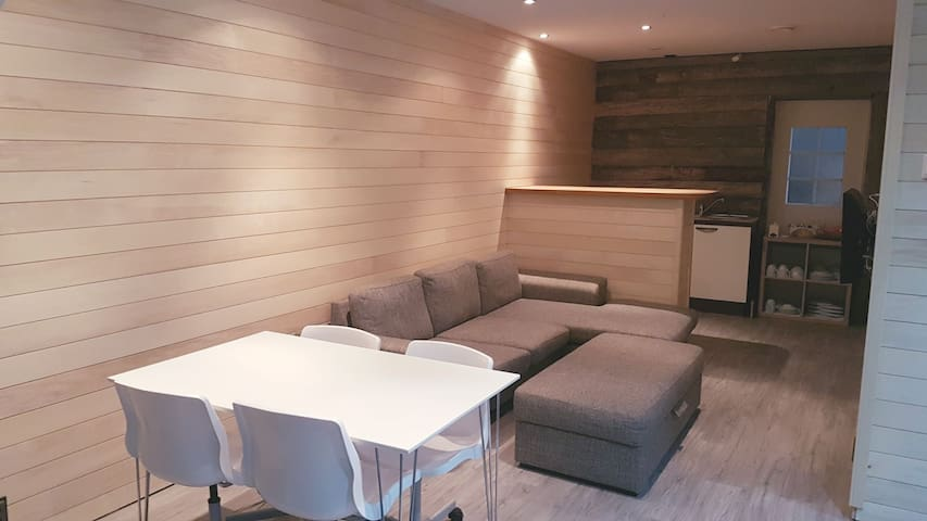Apartment Wille 64m2 (with own sauna!)