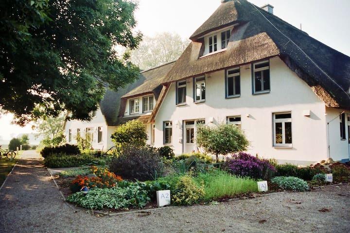 komfortable Ferienwohnung Usedomer Haffküste - Stolpe auf Usedom - Apartemen