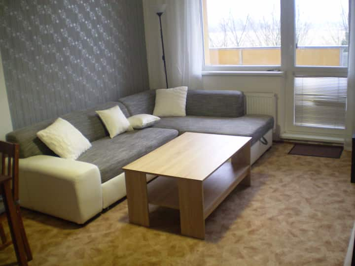 Two-room apartment with kitchenette