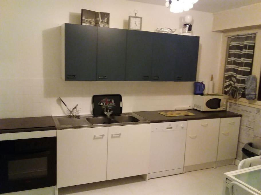 cuisine aménagée , vaisselle a disposition,  réfrigérateur, micro onde, plaque de cuisson/four