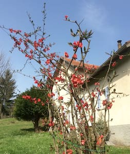 La Scellana, country house in Liguria - Tiglieto - 独立屋