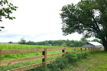 Relaxing views out back! Maybe you'll see some cows grazing, too!