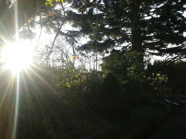Insel Ruegen~Weltnaturerbe Jasmund|YOGA Haus