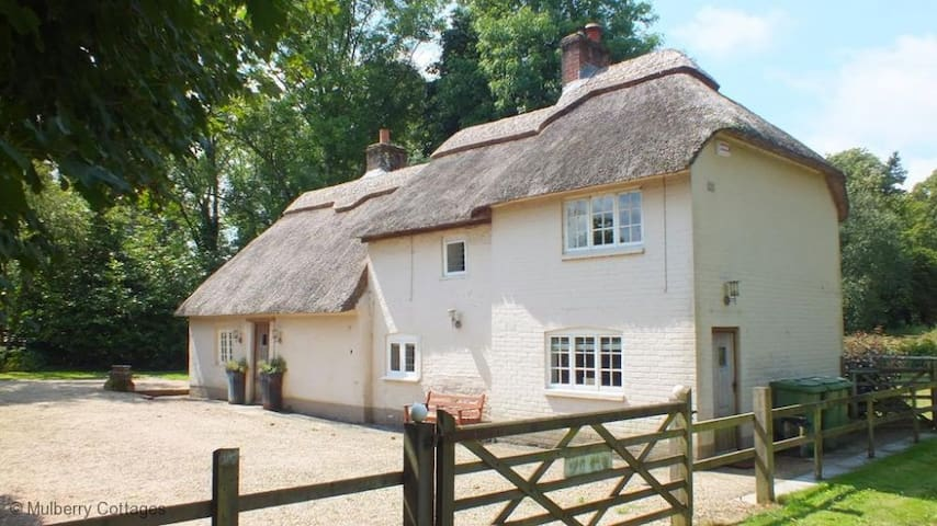 River Cottage at Athelhampton, Sleeps 6,  sits in an exclusive spot in Dorset, neighbouring the historic stately home of Athelhampton House - Dorchester - Casa