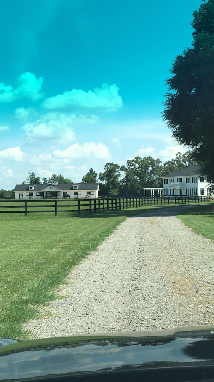 Gorgeous Horse Farm Barn Suite Near Bruce's Field