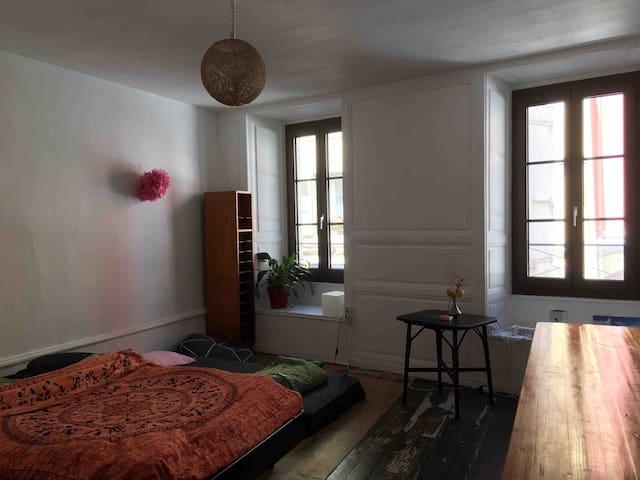 Grande chambre au <3 de la vieille ville de Vevey