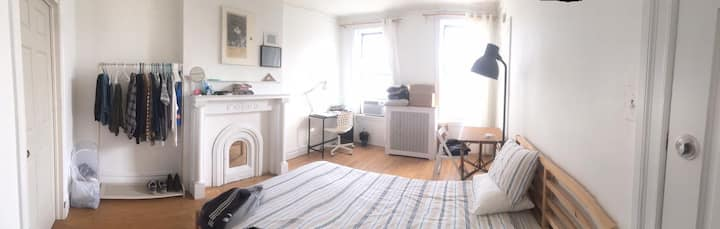Super Bright Super Large Room in Cozy BedStuy