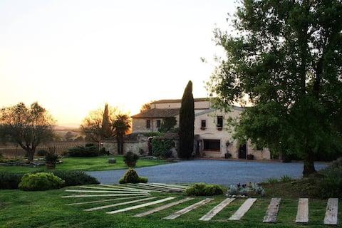 Comfortable house among vineyards