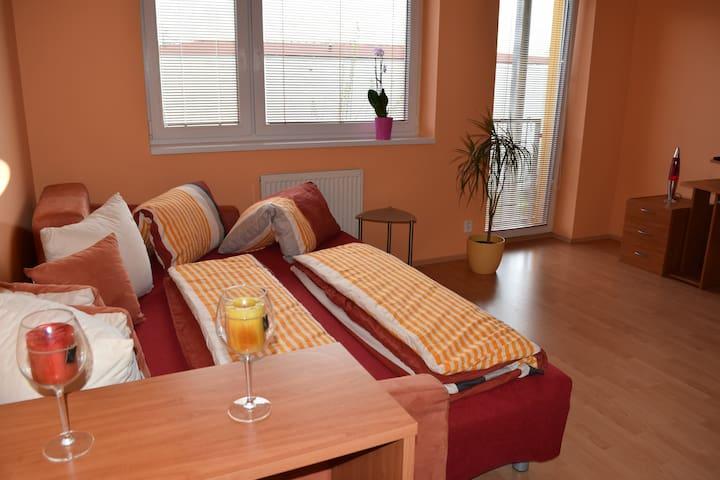 Homely apartment - Praga - Pis