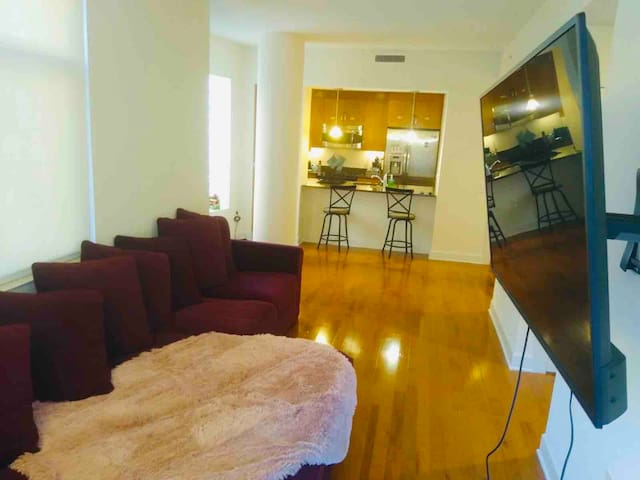 Luxurious Apartment Centrally Located