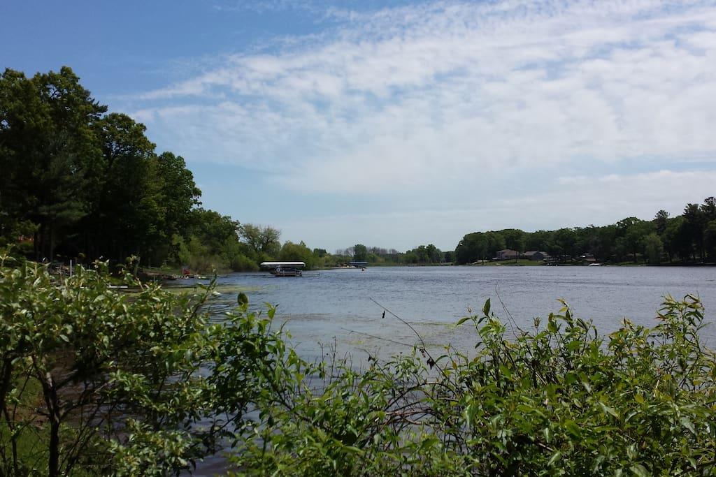 Bayou Views