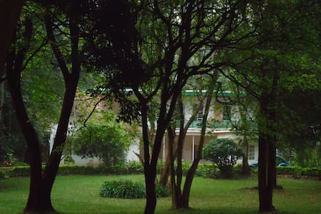 one guest room with a beautiful forest scenery - Nairobi - Talo