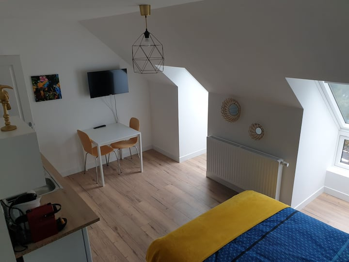 Quartier Haut d'Henriville studio n°5