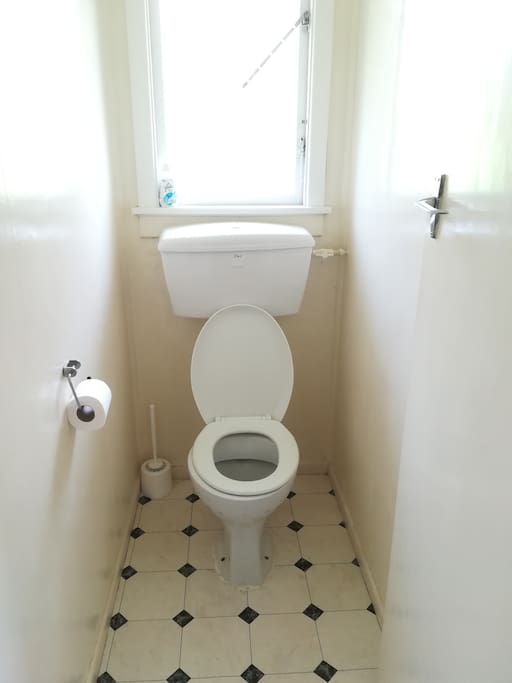 Separate toilet from shower