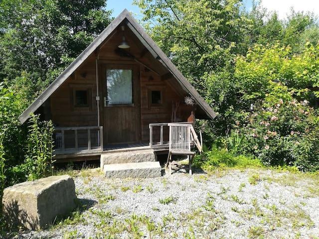 Uriges Hexenhaus im permakulturellen Waldgarten