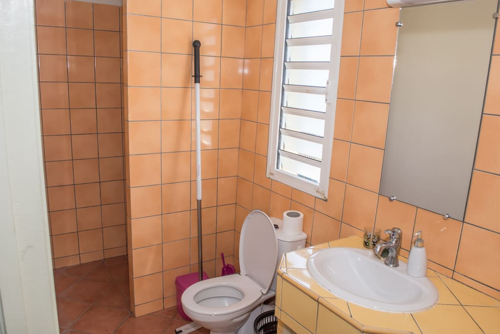 Chambre c t de l 39 h pital in laws for rent in for Salle de bain translation