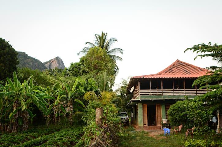 Rural Backpacker's Lodge - Dambulla - Dormitório