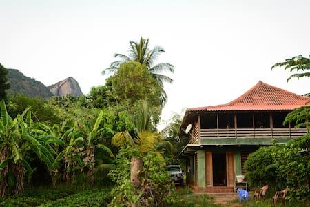 Rural Backpacker's Lodge