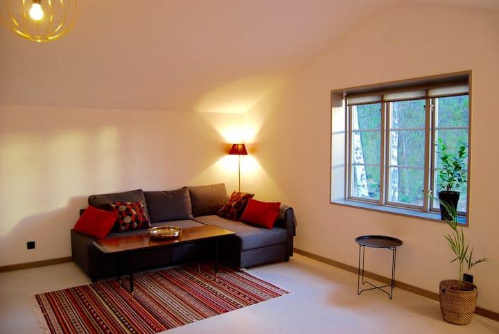 Studio Apartment / House - Stockholm south.