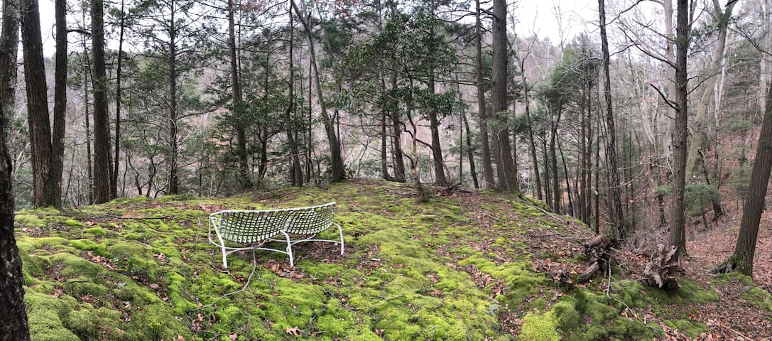 Spacious private 2 BR/ 2 Bath Suite among nature