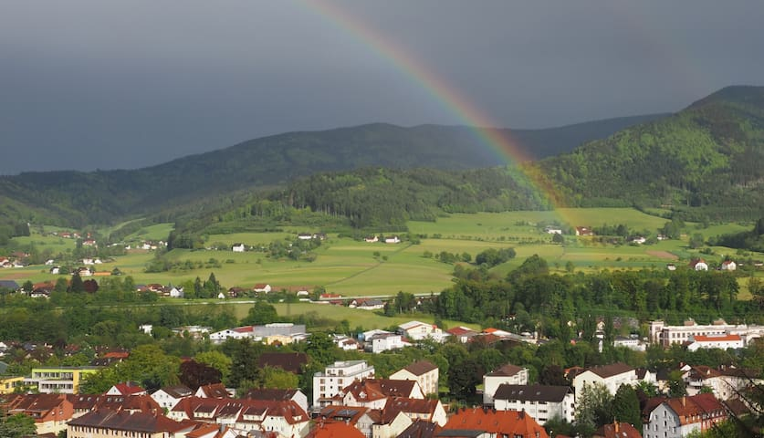 Apartment in Waldkirch near Freiburg with a view