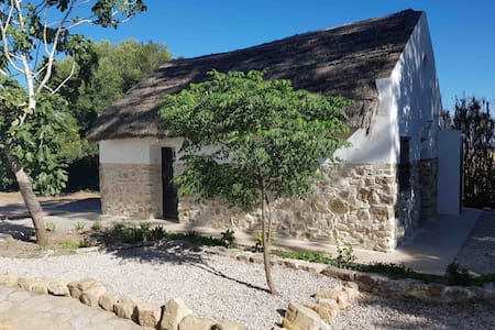 Cosy 1 bed thatched cottage with pool near Vejer.