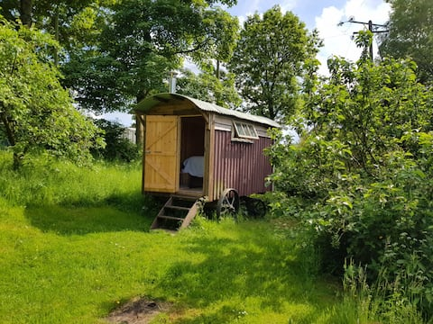 Peaceful Cotswold Shepherds Hut