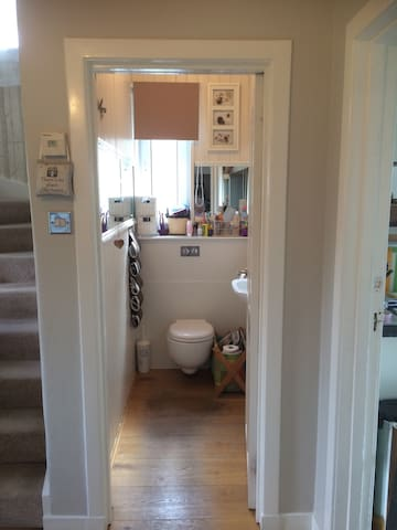 Downstairs loo