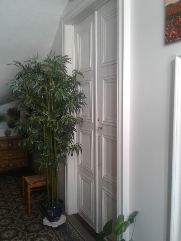 Porte d'Entrée de votre appartement