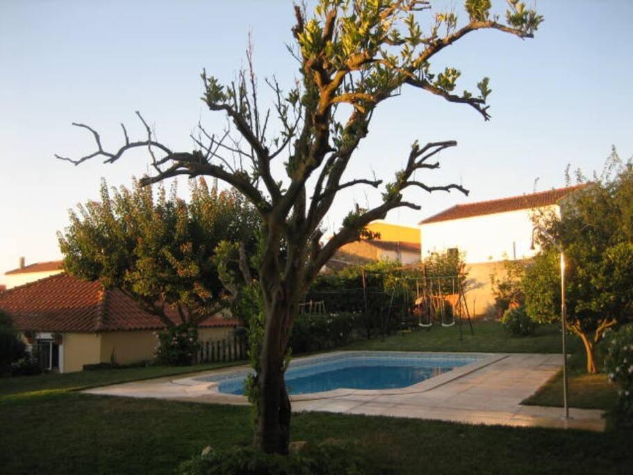 Piscina privada - Private pool - Piscine privée