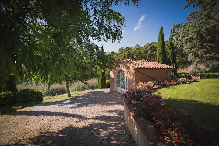 Villa Cava Alta, Riparbella,Toscana,11 posti letto