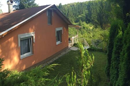 Peaceful valley house large terrace - Kőszeg