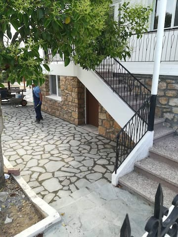 House Kolevi