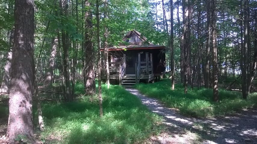 Camp Golden Pond - Rustic Cabins - Wald 1